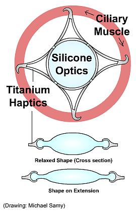 Intraocular Lens Prototype